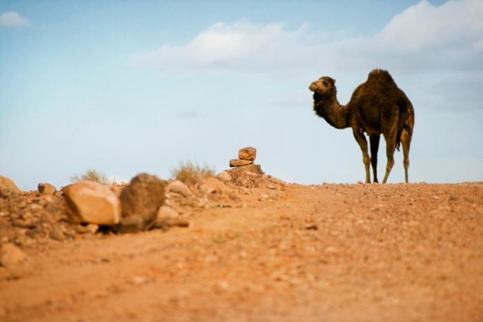 maroc_090205_0204