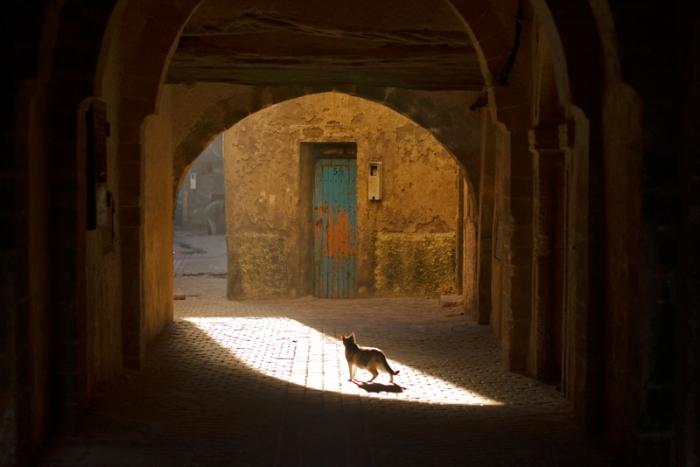 maroc_090211_0030