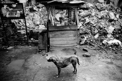 Photo of life in Delhi, India.  From a collection by Belgian photographer Frederik Buyckx, 2009