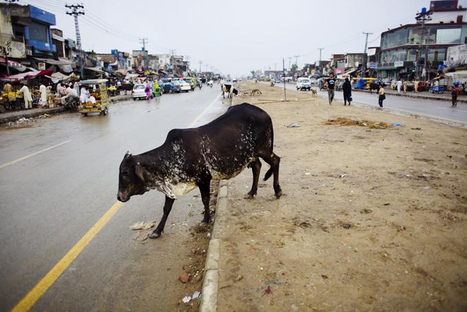 Pakindia5_98